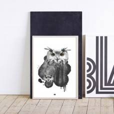 Forest Owl Framed Print