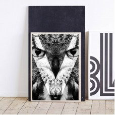 Owl Print with Frame