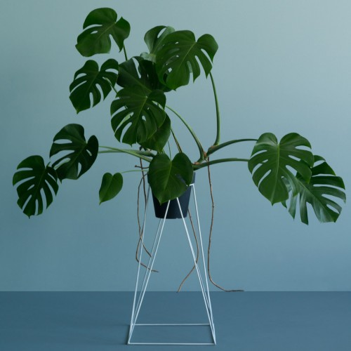 White Metal Plant Stand-Small