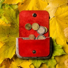 Autumn Red Felt Cardholder & Coin Purse