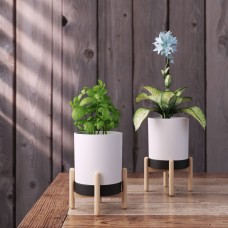 Ring Bowl Plant Pot with Stand