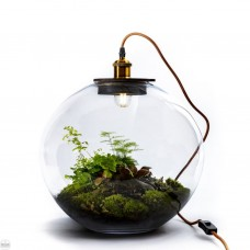 Demeter Globe Plant Light