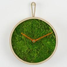 Moss Wall Clock 6