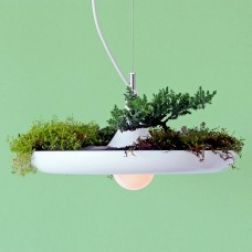 Babylon Hanging Light