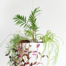 Well Light Planter