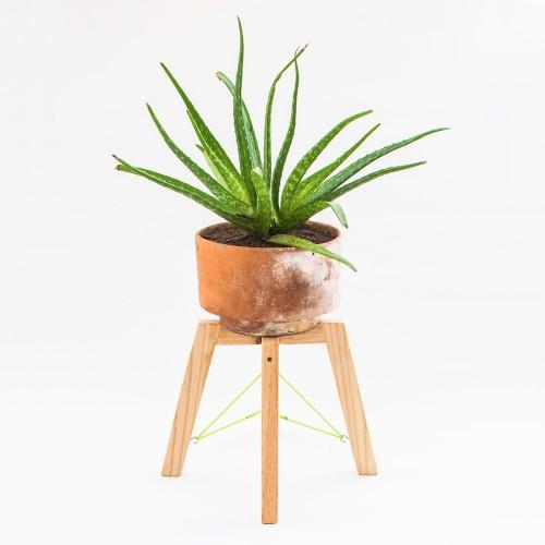 Natural Finish Short Planter Stand