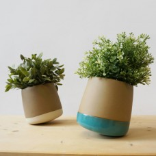 Flowertop - 3 Plant Pot pack