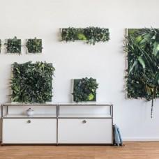 Plant Island Frame 70 x 20