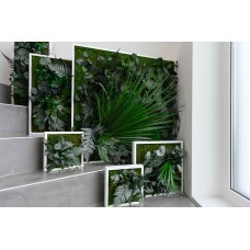 Jungle Plant Frame 80 x 80
