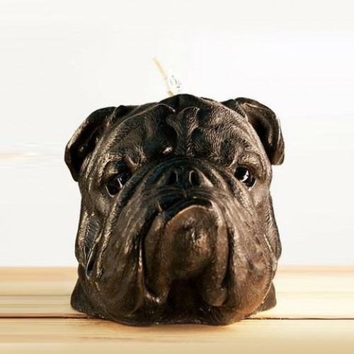 British Bulldog Candle Black