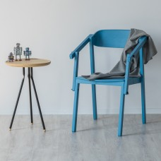Coloured Atelier Arm Chair